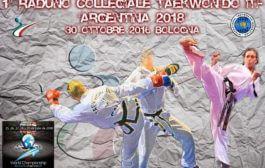 1° Collegiale  2016/2017 - Bologna